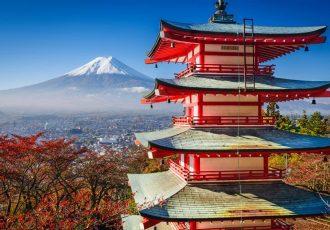 Сколько дней делается виза в Японию?